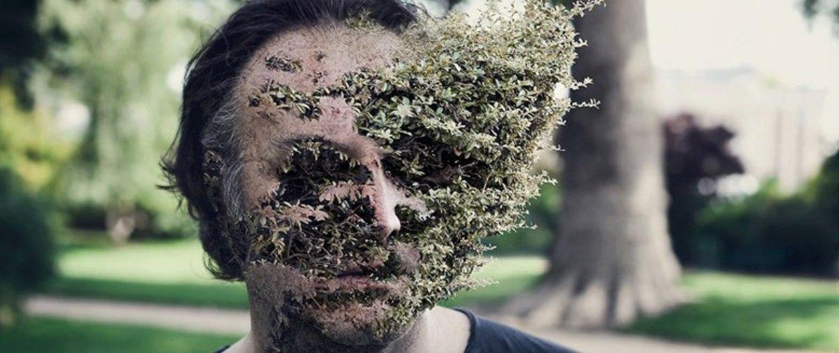 Artista funde rostos de pessoas com plantas e o resultado é surreal