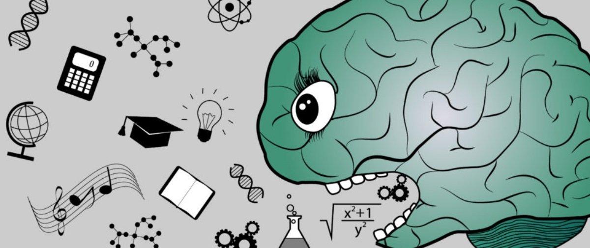 Comece bem a semana alimentando o seu cérebro com estas 15 curiosidades