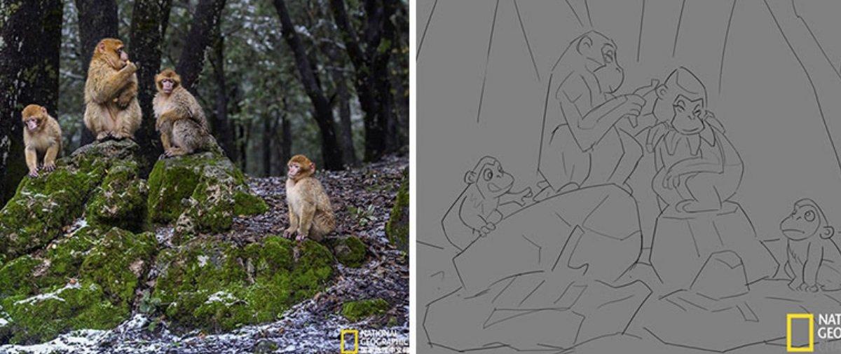 Ilustrador transforma fotos da National Geographic em desenhos encantadores
