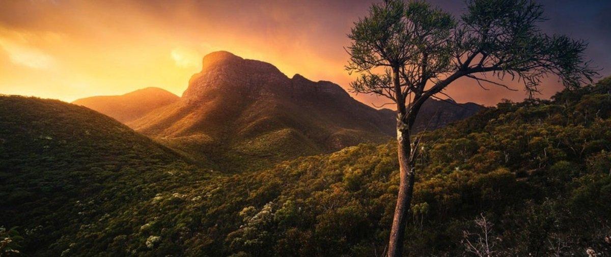 Concurso de fotos de natureza na Oceania reúne imagens sensacionais