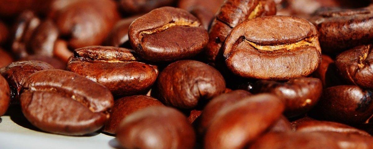 6 curiosidades legais sobre café