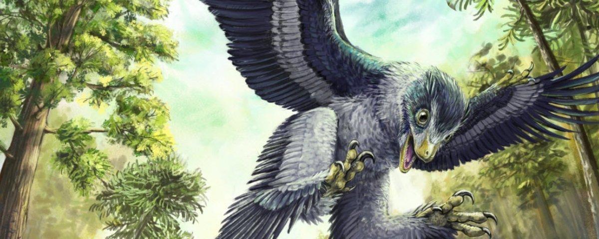Descobriram criança de neandertal devorada por ave pré-histórica gigante