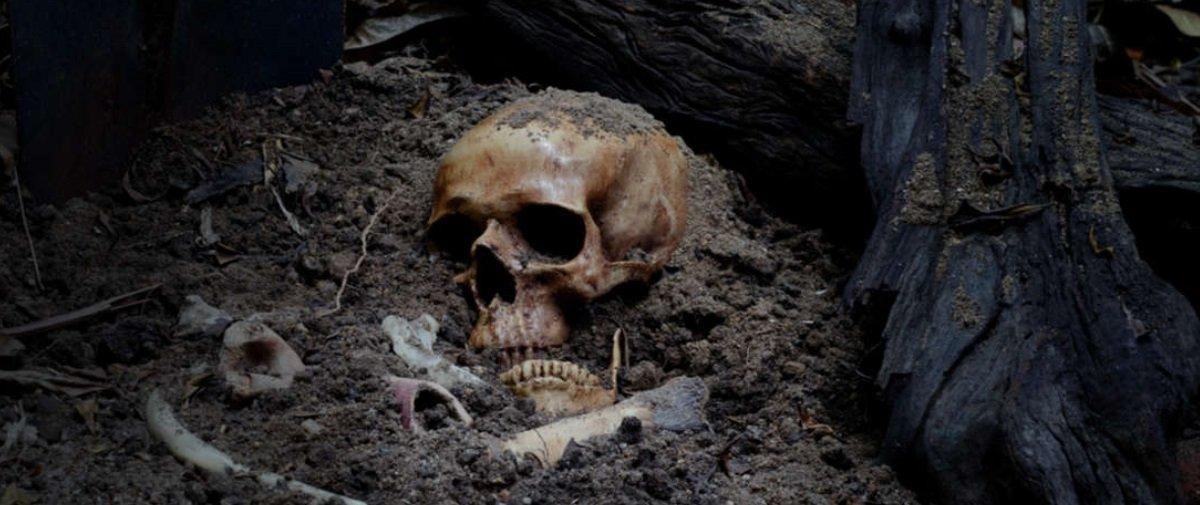 Cientistas propõem novo método para descobrir o sexo de ossadas antigas
