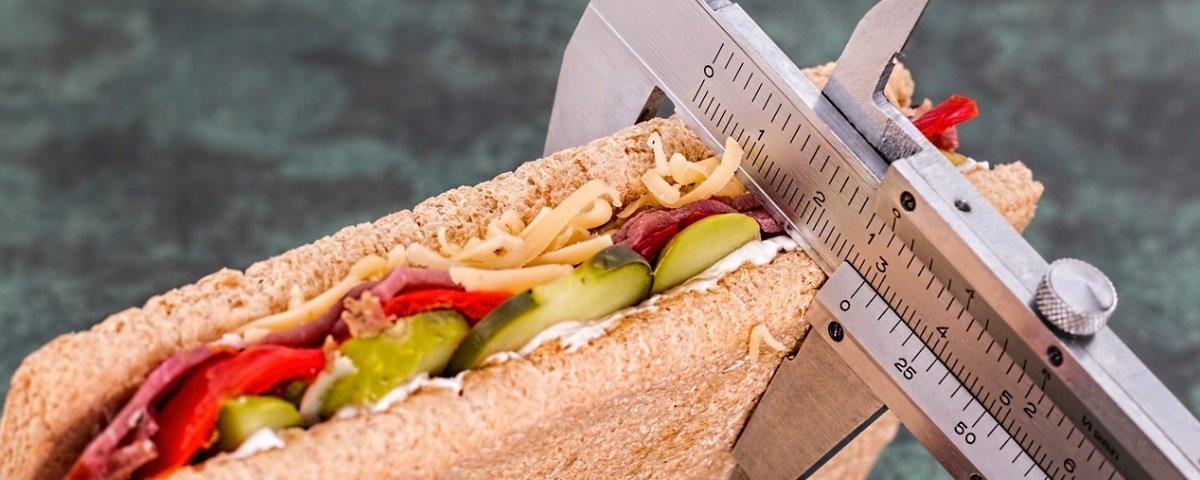 13 fatos sobre obesidade