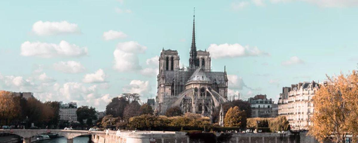Abelhas que vivem na cobertura de Notre Dame sobreviveram ao incêndio