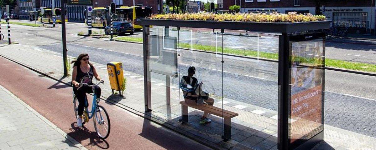 Pontos de ônibus viram parques em miniatura para abelhas na Holanda