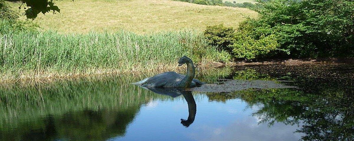 Exame de DNA indica que 'Monstro do Lago Ness' seria uma enguia