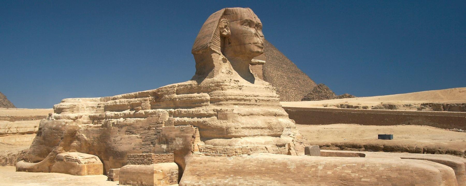 Múmias de leões são encontradas no Egito