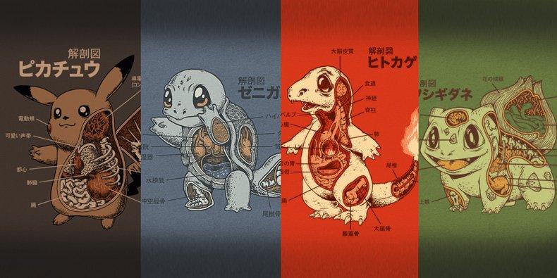 Fantástico Camisa De La Anatomía Pokemon Bosquejo - Anatomía de Las ...
