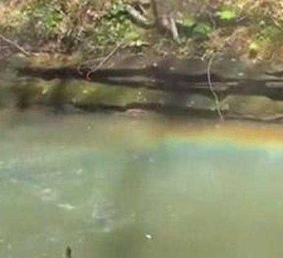 Tiros de escopeta podem gerar belos arco-íris [vídeo]
