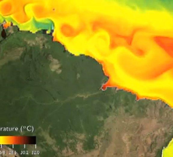 Terra viva: confira a dinâmica de correntes marítimas do nosso planeta