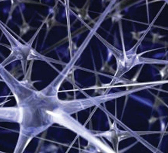 Cientistas transformam células da pele em neurônios para curar Parkinson