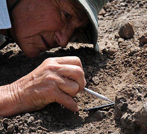 Fósseis de 2 milhões de anos poderiam ser de novos ancestrais humanos