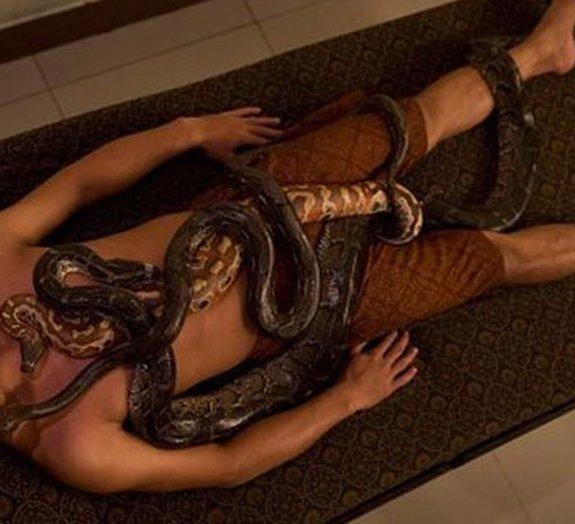 Cobras massagistas na Indonésia deixam corajosos clientes relaxados