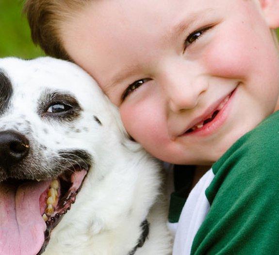O antes e o depois de cães resgatados: amor é tudo o que eles precisavam