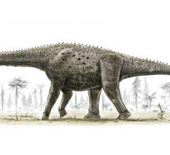 Cientistas encontram fósseis de um dos maiores dinossauros do mundo