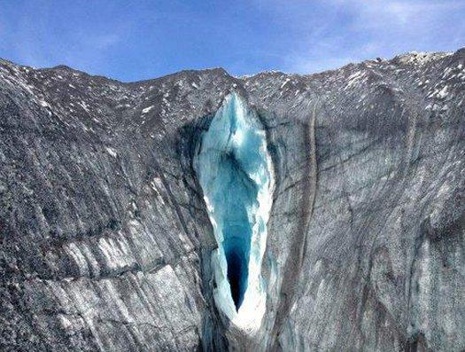 Parece, mas não é: 10 fotos da natureza que lembram vaginas
