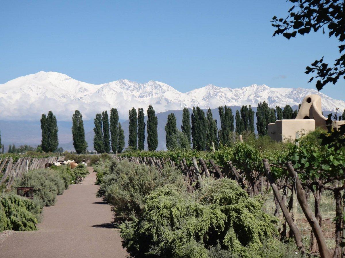 17 - Cavas Wine Lodge, Mendoza, Argentina