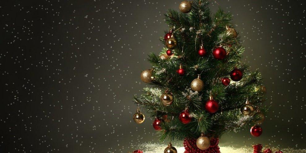 Existe Um Dia Correto Para Montar A árvore De Natal Mega Curioso