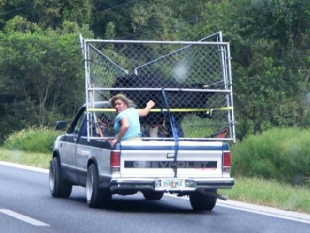 62 fotos que provam que o transporte não tem mais salvação