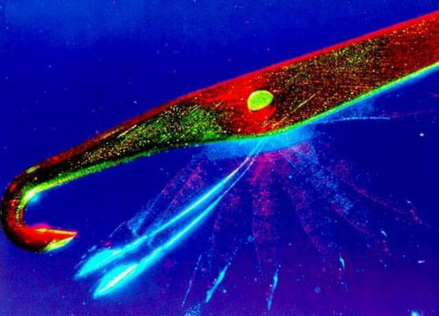 1989 – A imagem (de uma agulha de tear) foi registrada por Marc Van Hove de Centexbel, na Bélgica, através da técnica de múltipla exposição.
