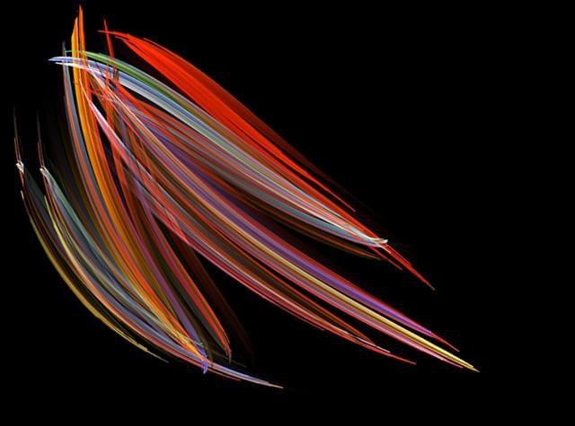 2008 – Diatomácea: mais precisamente, a imagem mostra Pleurosigma, um organismo marinho fotografado por Michael Stringer de Westcliff-on-Sea, localizado no Reino Unido.