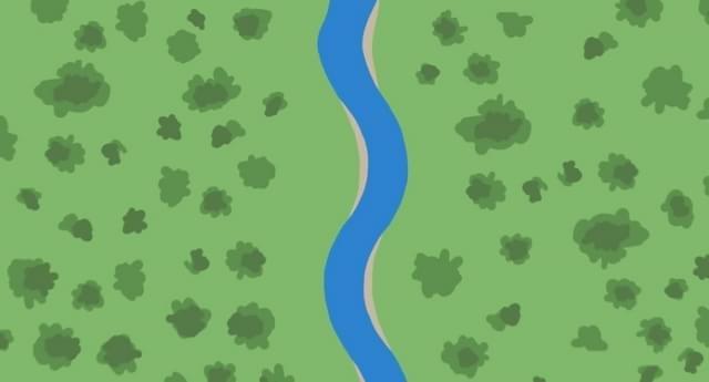 Você sabe como se formam as curvas dos rios? [vídeo]