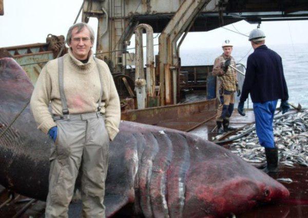 Esse pescador pegou algo inesperado — infelizmente