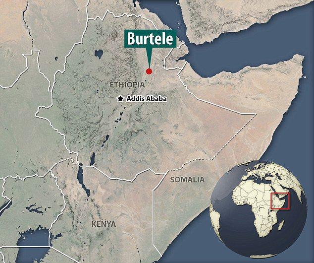 'Vizinho' de Lucy de 3,5 milhões de anos é encontrado na Etiópia