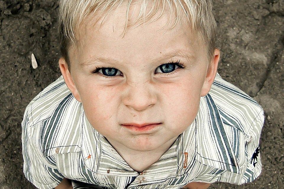 Insecticida pode afetar desenvolvimento intelectual de crianças - Mega Curioso