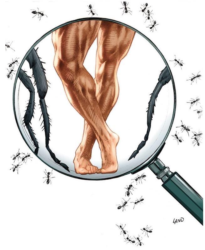 Homem-Formiga, por Greg Land