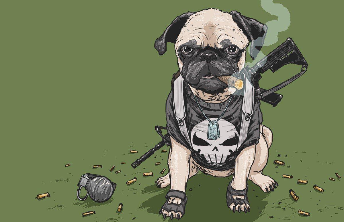 Misturar personagens da Marvel com cachorros? Claro que dá certo!