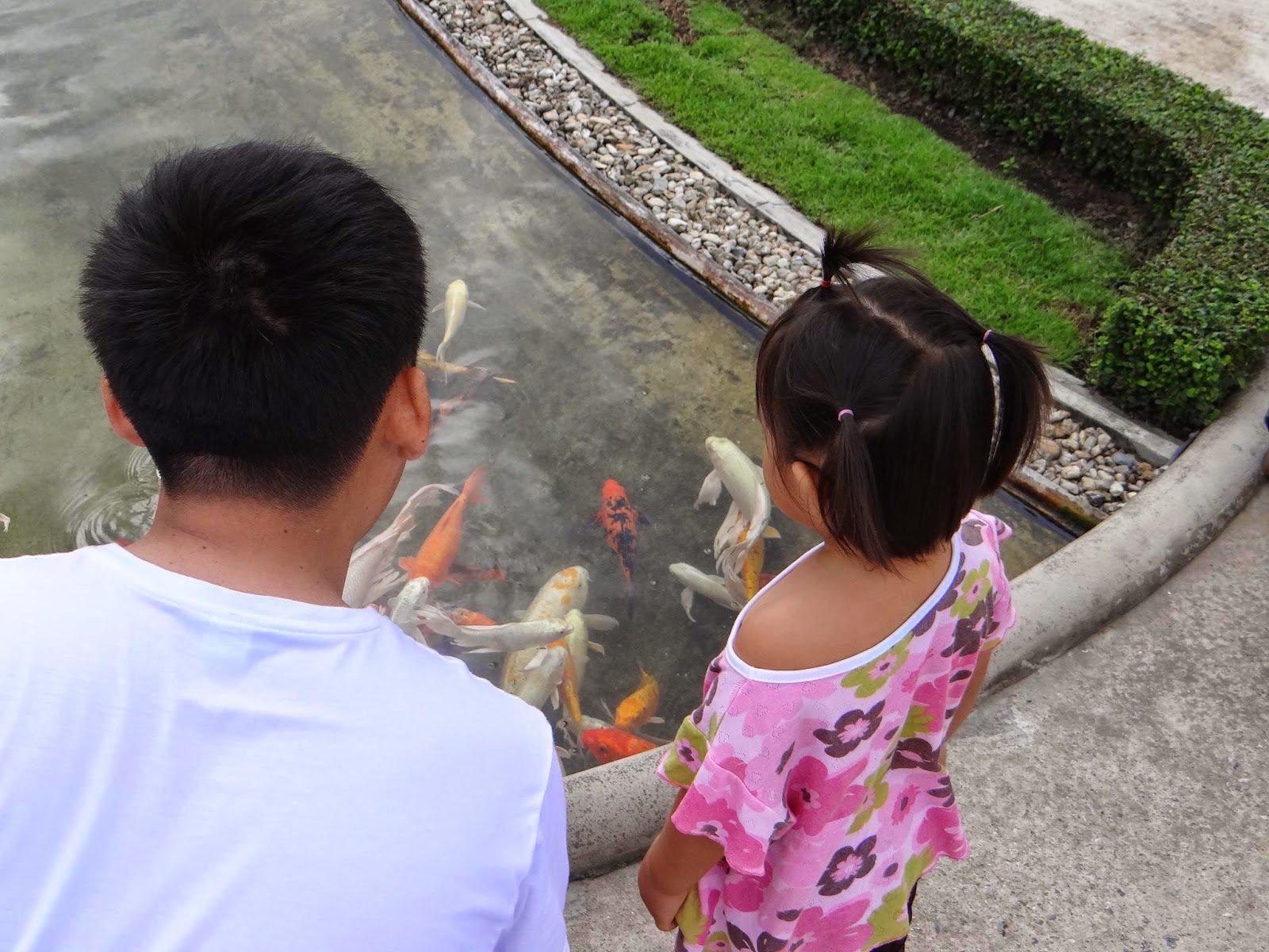 Turistas podem alimentar os peixes que ficam no lago que circunda o templo