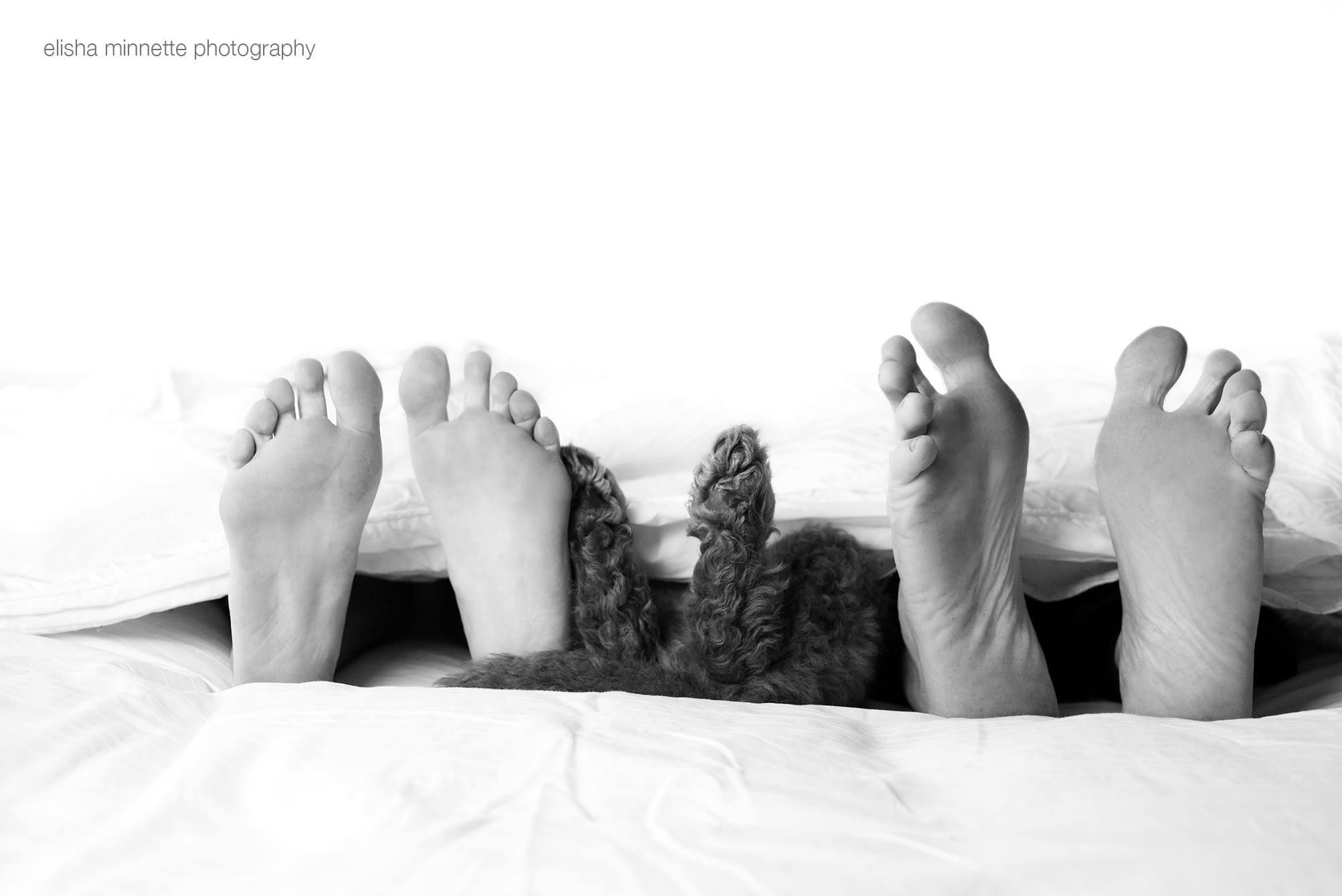 Inusitado: casal prepara surpresa para os pais com fotos do 'netinho'