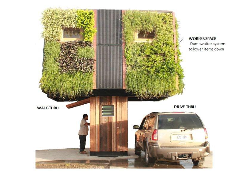 'Casa árvore' ou 'casa na árvore'? Conheça esse projeto inovador