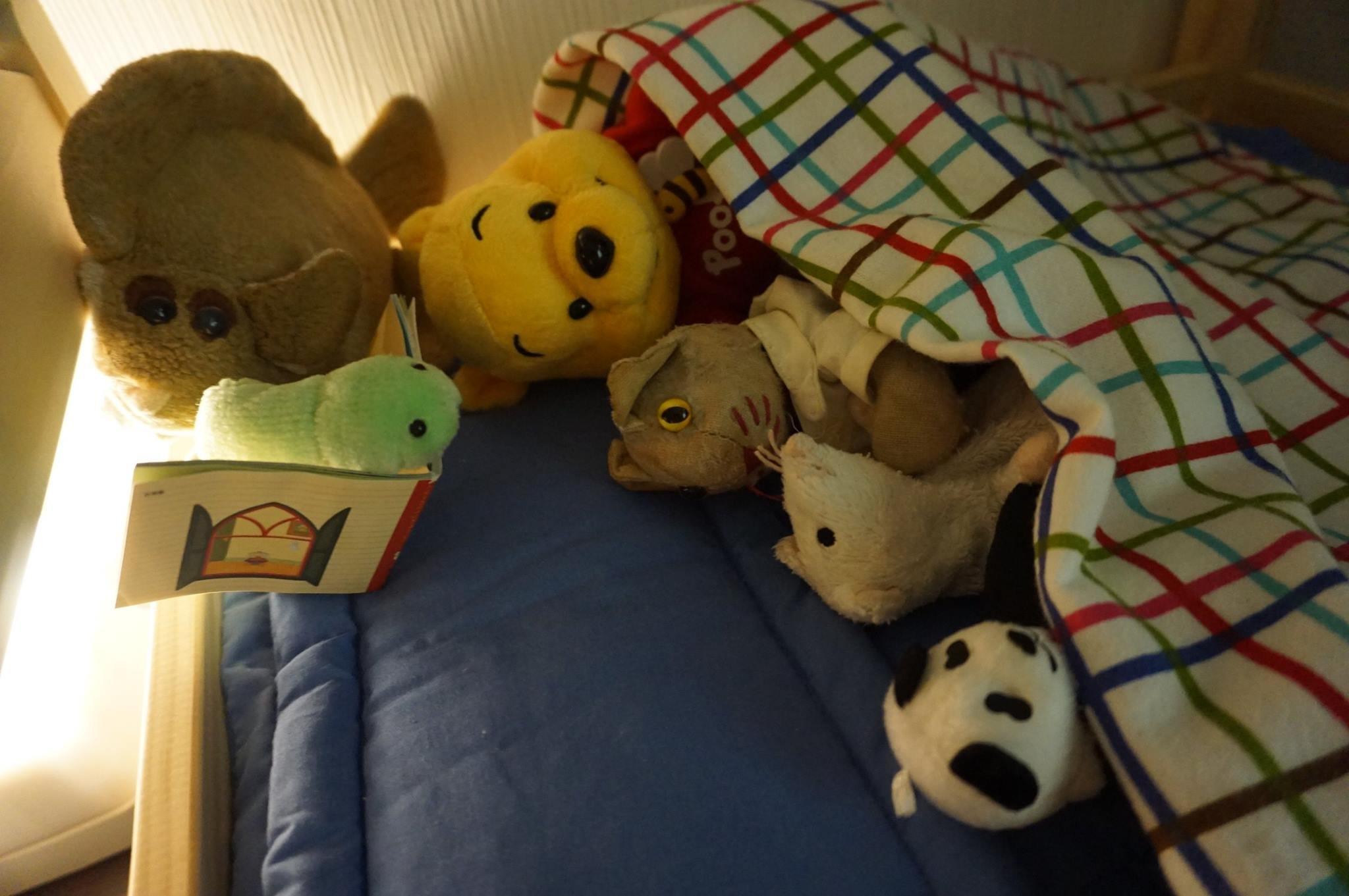 Eles também ouvem histórias para dormir...