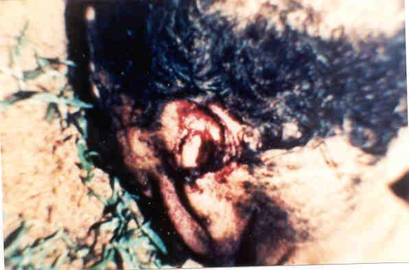 Conheça a história mais horripilante do mundo envolvendo abdução alienígena