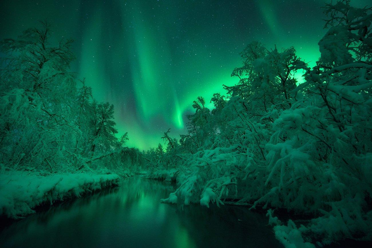 Finalista na categoria Aurorae - Sumo Waggle Adventure por Arild Heitmann (Noruega)