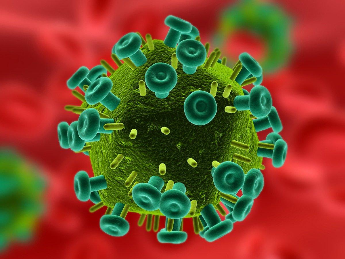 02165304929861 Pura aflicción: científicos graban virus del VIH de agitación en el cuerpo vivo