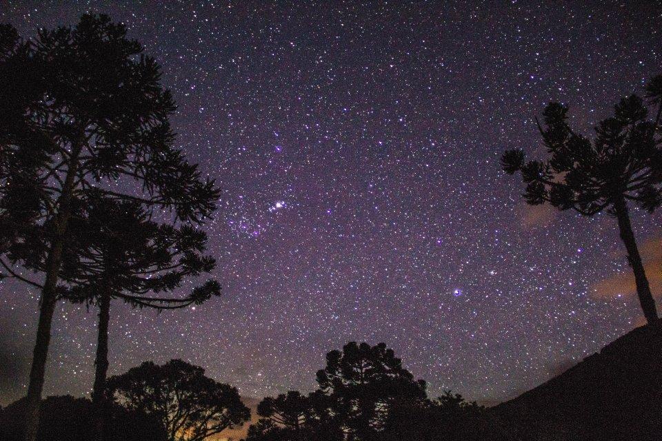 8 verdades sobre as estrelas que você vai adorar descobrir  - Mega Curioso