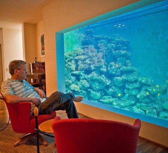 Homem constrói aquário gigantesco no qual ele pode até praticar mergulho