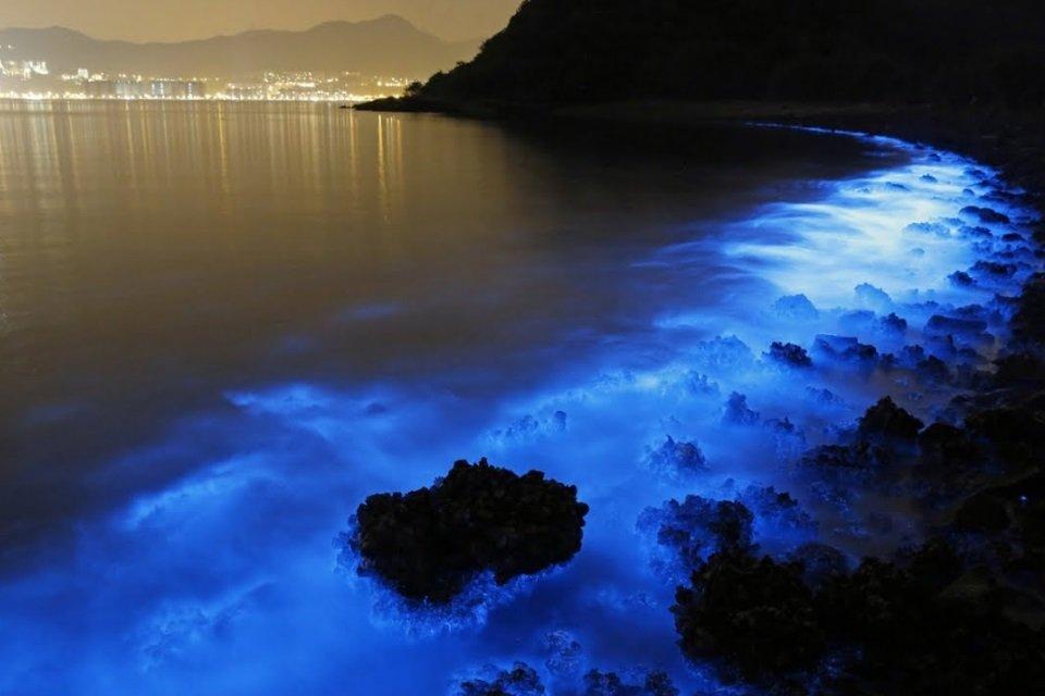 Espetáculo azul: algas luminescentes iluminam praia na Austrália - Mega Curioso
