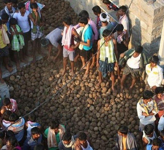 Conheça o festival na Índia no qual há uma guerra de estrume