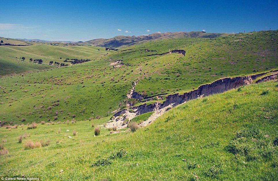 Força da natureza: terremoto eleva campo e cria paredão na Nova Zelândia