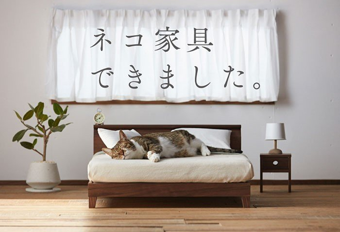 Móveis para gatíneos: mais um motivo para amarmos o Japão