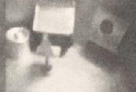 Estiloso! Foto de Alien com óculos de Sol é mostrada por ufólogo