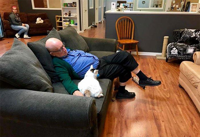 Este senhor visita um abrigo de gatos todo dia para dormir com os bichanos