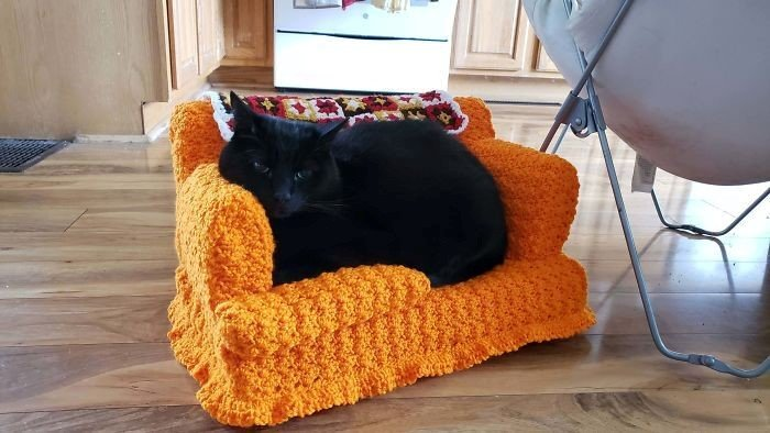 Sofá de crochê para gatos é a nova tendência durante a quarentena
