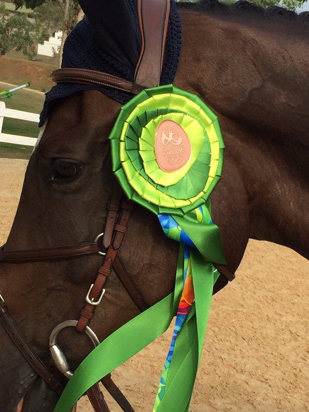 Um grande atleta de quatro patas com sua fita de bronze, dos jogos do Rio (Imagem: US Equestrian/Twitter)
