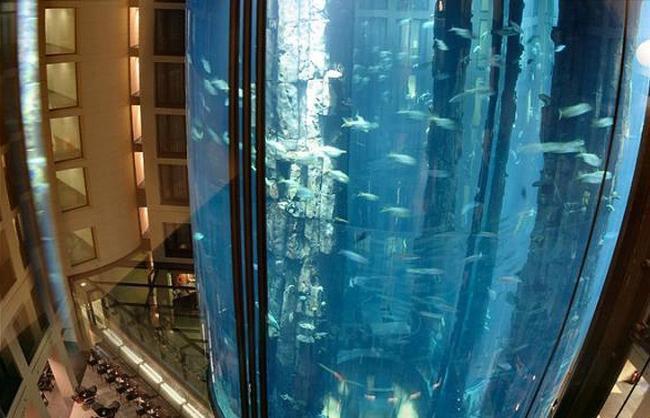 Hotel de Berlin tem aquário gigante com peixes tropicais no lobby